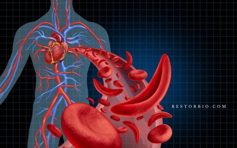 Blood pressure (1)