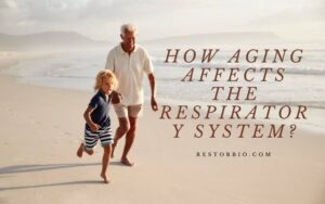 How Aging Affects The Respiratory System? Top Full Guide 2021