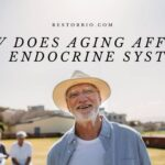 How Does Aging Affect The Endocrine System Top Full Guide 2021