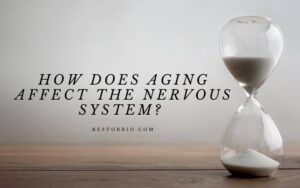 How Does Aging Affect The Nervous System Top Full Guide 2021 (1)